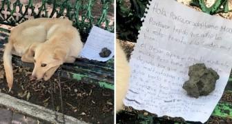 S'il vous plaît, adoptez-moi : les mots déchirants de la lettre laissée à côté d'un chien abandonné sur un banc