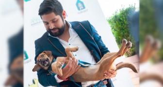 Ein peruanischer Junge adoptiert einen streunenden Hund, den er während der Fußballweltmeisterschaft in Russland getroffen hat