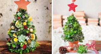 17 idee per trasformare le piante grasse in graziosi alberi di Natale: la soluzione ideale per chi ha poco spazio
