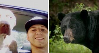 Un uomo ha lottato contro un orso selvaggio per salvare la vita al suo fedele amico a quattro zampe
