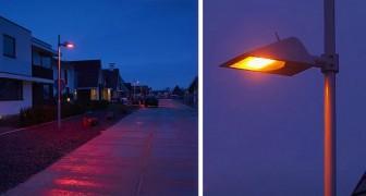 Questa cittadina ha illuminato di rosso le sue strade per aiutare i pipistrelli a muoversi di notte