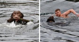 Ein junger Mann taucht in eisige Gewässer und rettet einen Hund, der sich in einem Seil verfangen hat