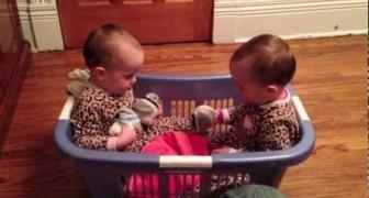 Morirete dal ridere ascoltando la conversazione ASSURDA di queste due gemelle