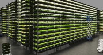 Dieser windbetriebene vertikale Gemüsegarten wird tausend Tonnen Gemüse pro Jahr produzieren