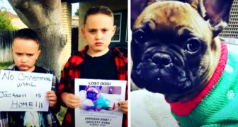 Dois irmãos decidem não abrir os presentes de Natal até encontrarem o seu cachorro desaparecido