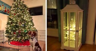 16 persone che sono riuscite a realizzare un albero di Natale a prova di cane e gatto