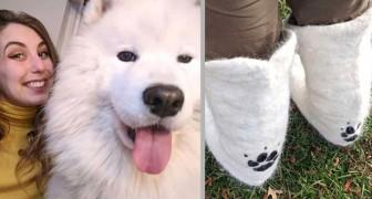 La sua cagnolina perde così tanti peli che la padrona decide di raccoglierli e rivestirci un paio di stivali