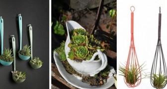 10 simpatiche fioriere e terrarium fai-da-te ricavati dagli utensili della cucina