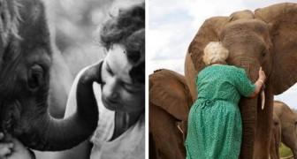Questa donna si è presa cura degli elefanti orfani per molti anni: loro la amano come un membro del branco