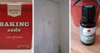5 rimedi casalinghi, facili ed economici per rimuovere le macchie di muffa in casa