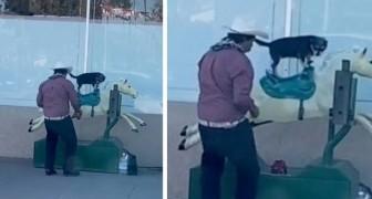 Ein Mann wird gefilmt, während er seinen Hund auf einem mechanischen Pferd reiten lässt