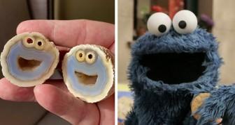 Geologo scopre una rara roccia vulcanica: assomiglia incredibilmente al Cookie Monster