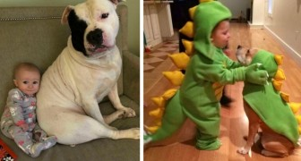 Your child needs a dog: 17 photos full of sweetness describe the friendship between children and their puppies