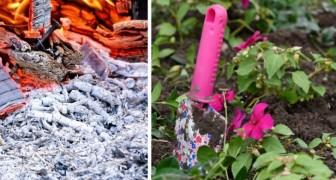 Qualche consiglio pratico e utile per utilizzare la cenere del camino nella cura delle piante