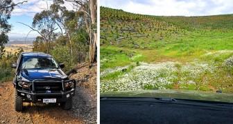 Prende una breve scorciatoia suggerita da Google Maps e vive un'esperienza memorabile nella natura selvaggia