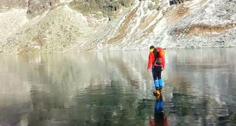 Duas pessoas admiram um lago congelado, mas o verdadeiro ESPETÁCULO está embaixo dos pés deles!