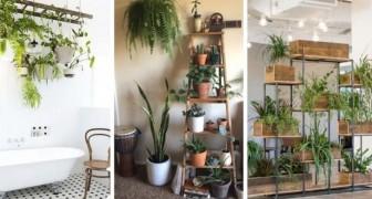 10 fantastiche idee per arredare casa e balcone con le piante creando magnifici angoli verdi