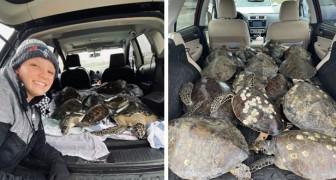 In Texas le persone stanno caricando le auto di tartarughe, per salvarle dalle acque gelate dalla tempesta di neve