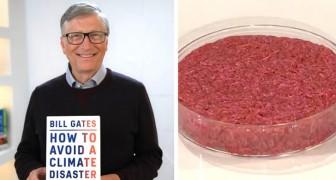 Nur noch synthetisches Fleisch essen: Bill Gates' Vorschlag zur Rettung des Planeten vor der Klimakatastrophe
