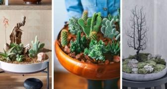 Un jardin dans un plateau : découvrez comment créer de délicieuses compositions vertes dans divers contenants