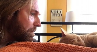 Katten väcker honom jamandes varje natt och han hämnas: videon är verkligen rolig