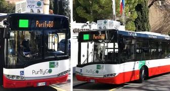 Questi speciali autobus riescono a mangiare lo smog mentre viaggiano per la città