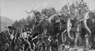 Il mistero irrisolto di Annibale: da dove arrivavano i suoi elefanti da guerra?