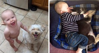 15 adorable photos to show that children need a dog in their life