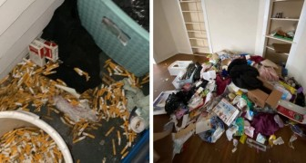A landlord shows with photos the damage done by renters in just 6 months