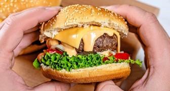 Compra un hamburger per la pausa pranzo: la collega vegana lo vede e gli chiede di andare a mangiarlo fuori