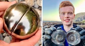 Studente trova un boccino d'oro che al suo interno nasconde una creatura marina di 185 milioni di anni