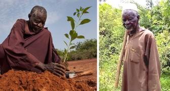 Man hielt ihn für verrückt, aber dieser Mann schaffte es, die Wüste mit traditionellen Anbaumethoden aufzuhalten