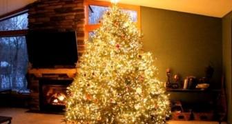 It seems like a normal Christmas tree, but it hides an explosive secret !