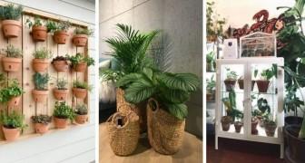 Mettez un peu de vert chez vous en insérant des plantes dans le mobilier de la maison : les meilleures idées