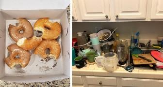 18 foto irritanti mostrano cosa significa convivere con dei mostri dentro casa