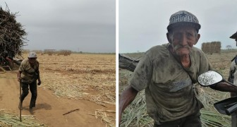 At 94 he works in the fields for more than 10 hours a day: his children have abandoned him
