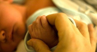 Hij doet de vaderschapstest en ontdekt dat de baby de zoon is van zijn nooit geboren tweelingbroer: het is een menselijk chimerisme