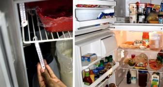 Frigorifero e congelatore: le regole d'oro per conservare i cibi evitando sprechi di energia