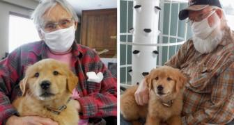 Questa casa di riposo ha assunto un cucciolo per risollevare il morale degli anziani residenti