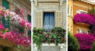 13 balcons fleuris plus beaux les uns que les autres dont vous inspirer pour créer de beaux espaces