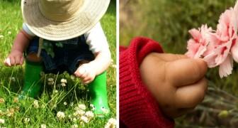 Un garçon de 6 ans est envoyé au tribunal pour un crime terrible : il a cueilli une fleur dans une pelouse