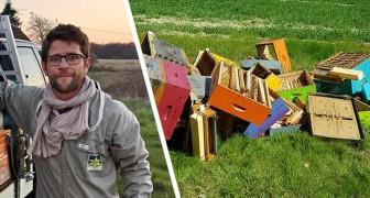 130 Bienenstöcke eines Imkers zerstört, Tausende von Bienen tot: Wir haben alles verloren