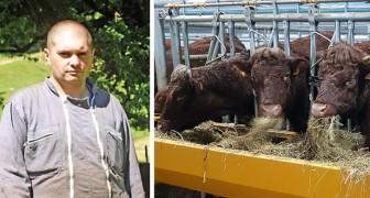 Un éleveur depuis six générations contraint de déménager : ses vaches dérangent les voisins venus de la ville