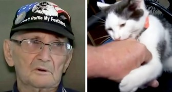An old man falls in the shower and remains on the floor for 16 hours: the cat saves him by bringing him his cell phone