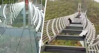 Toerist blijft op 100 meter hangen terwijl de glazen brug wordt verwoest door windstoten
