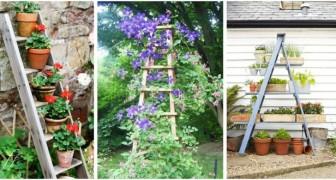 Ricicla le vecchie scale di legno: possono diventare incantevoli decorazioni per il giardino