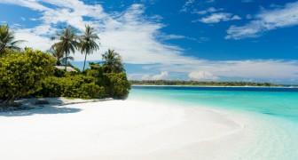 Um seine Ex-Freundin zurückzugewinnen, baute er mit all seinen Ersparnissen die Insel der Liebe