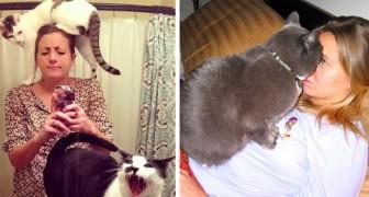Je hebt geen moment privacy meer!: 15 opdringerige katten die hun eigen perceptie van ruimte hebben