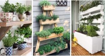 Piante aromatiche a portata di mano in casa? Crea delle fioriere fai-da-te per piantarle