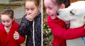 Mamma adotta in gran segreto una cagnolina di cui le sue figlie si erano innamorate: una sorpresa riuscita